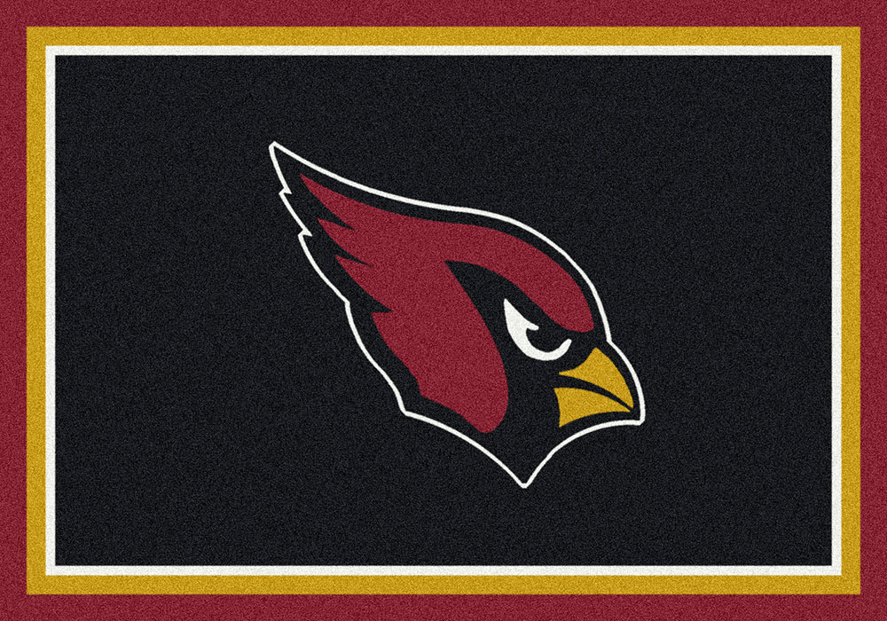 NFL_Spirit_C902_ArizonaCardinals