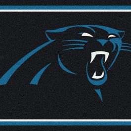 NFL_Spirit__C914_CarolinaPanthers