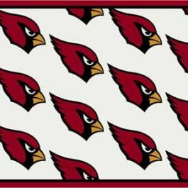 Arizona Cardinals 1002 - Team