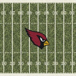 NFL_HomeField_C1003_ArizonaCardinals