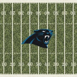 NFL_HomeField_C1015_CarolinaPanthers