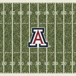 College_HomeField_C1012_Arizona